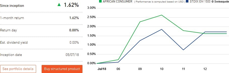 The African Consumer