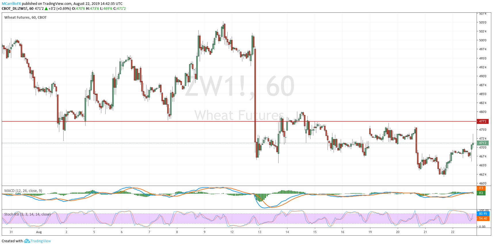 ZW1 Wheat Futures 1-hour chart August 22
