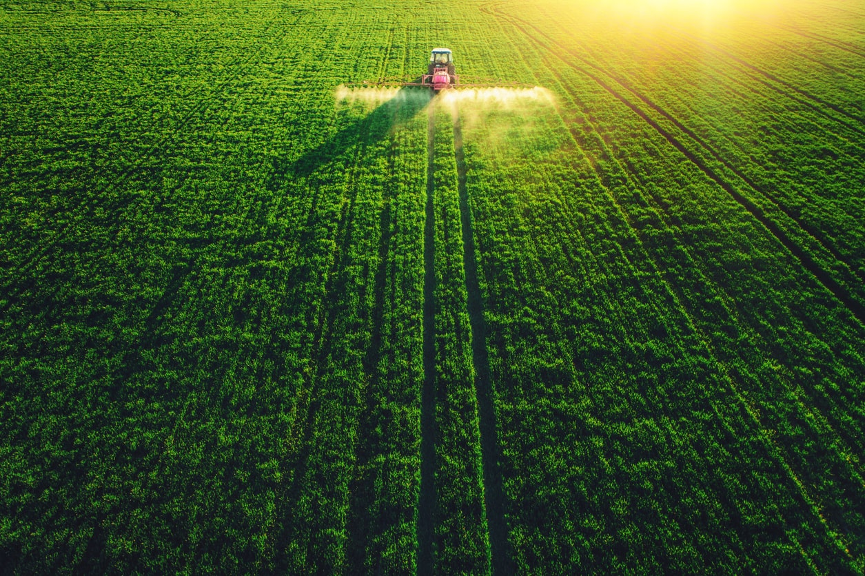Grains Mixed on Better Crop Conditions and Hopes for US Grains Demand