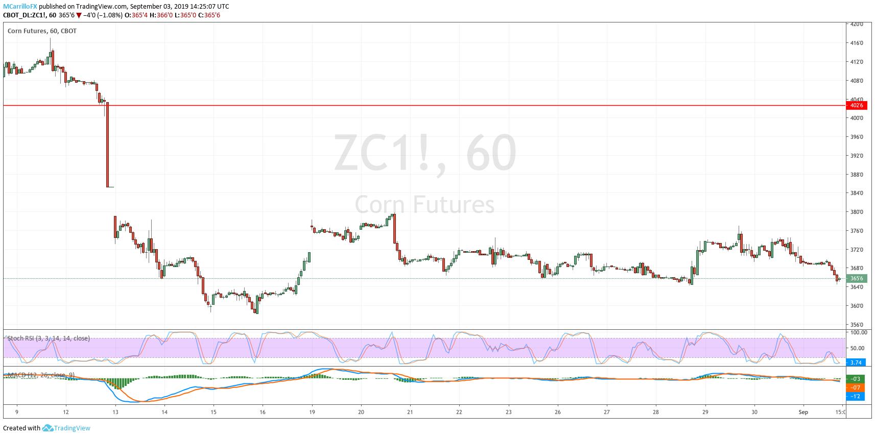 ZC1 Corn 1-hour chart September 3
