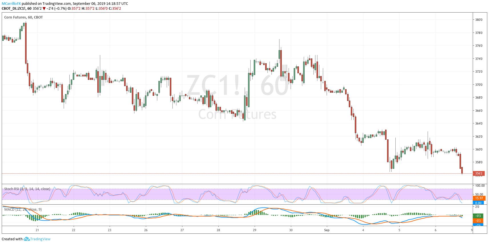 ZC1 Corn Futures 1-hour chart Sept 6