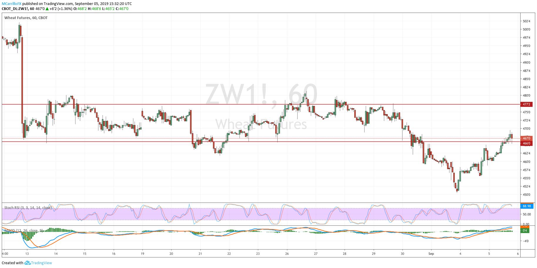 ZW1 Wheat 1-hour chart September 5