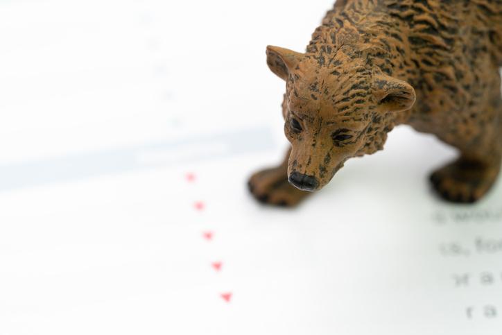 Bears Strike Back